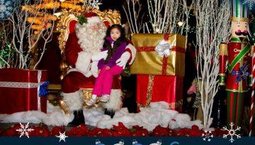 Magical BLVD Christmas